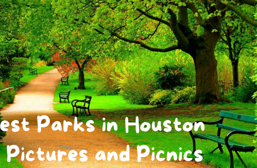 7 Best Parks in Houston for Pictures and Picnics